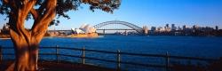 Sydney Monring SAT15