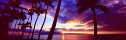 Maui Moments